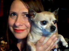 "Taco the Chihuahua on Amelia Curzon's Blog - ""Carte Blanche"""